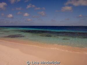 The Beautiful Blues of Bonaire. by Lisa Hinderlider 